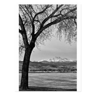 Cartão Postal Através do lago em preto e branco