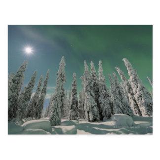 Cartão Postal Aurora Borealis