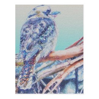 Cartão Postal Australiano Kookaburra