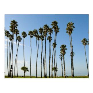 Cartão Postal Avenida de Cabrillo, Santa Barbara, Califórnia