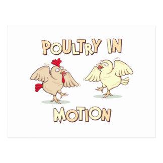 Cartão Postal Aves domésticas no movimento