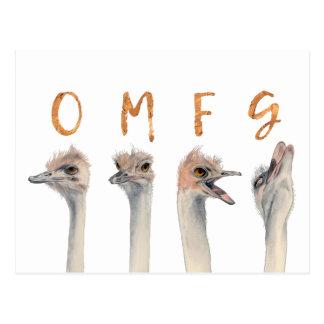 Cartão Postal Avestruzes de OMFG