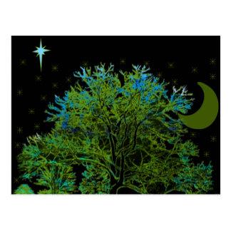 Cartão Postal Azuis da árvore