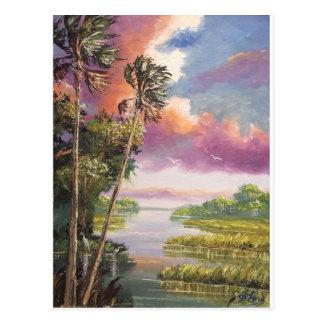 Cartão Postal Backwoods ventoso das palmeiras