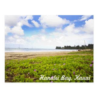 Cartão Postal Baía de Hanalei, cena tropical da praia de Kauai