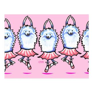 Cartão Postal Bailarina branca de Pomeranian