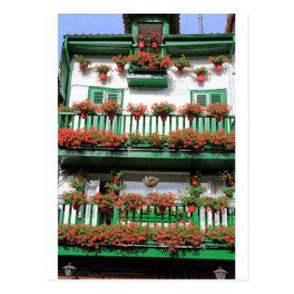 Cartão Postal Balcão espanhol catita de florescência vermelho