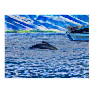 Cartão Postal Baleia que olha em Havaí fora de Maui