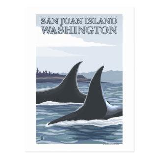 Cartão Postal Baleias #1 da orca - ilha de San Juan, Washington