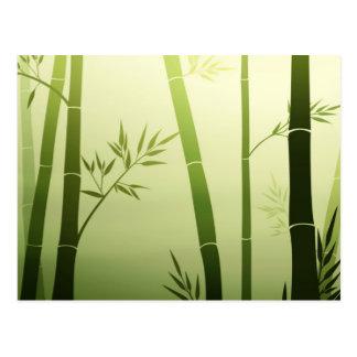 Cartão Postal Bambu