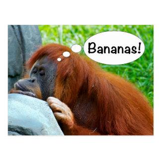 Cartão Postal Bananas!