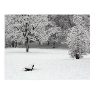Cartão Postal Banco e árvores da neve