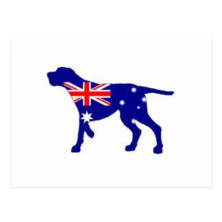 Cartão Postal Bandeira australiana - Coonhound de Redbone