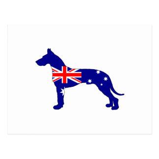 Cartão Postal Bandeira australiana - great dane