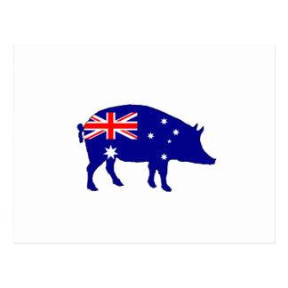 Cartão Postal Bandeira australiana - porco