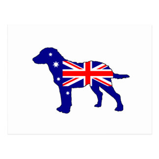 Cartão Postal Bandeira australiana - Retriever de baía de