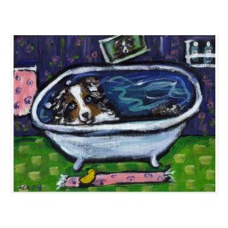 Cartão Postal Banho australiano do pastor