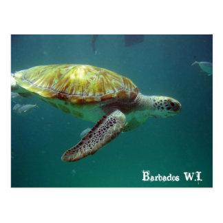 Cartão Postal Barbados W.I.