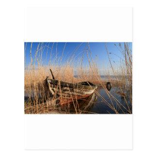 Cartão Postal Barco de madeira velho nos juncos