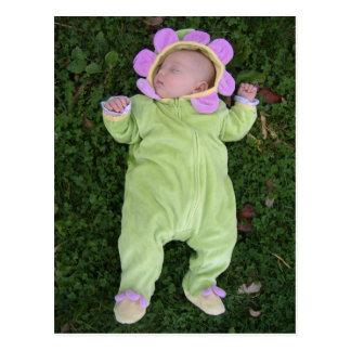 Cartão Postal Bebê de sono da flor