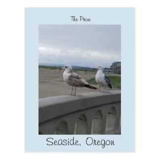 Cartão Postal Beira-mar Oregon duas gaivota no baile de