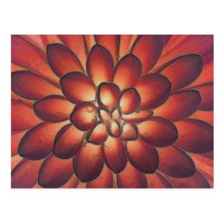 Cartão Postal Belas artes florais abstratas modernas das pétalas