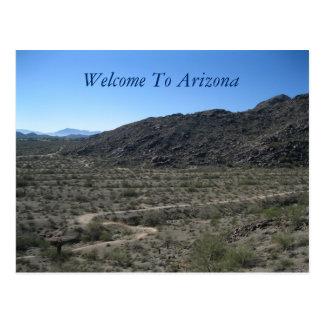 Cartão Postal Beleza do deserto da arizona