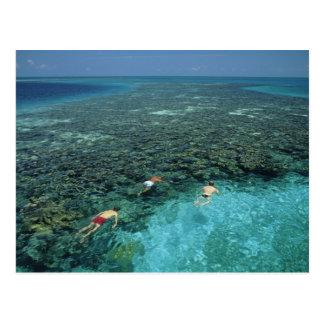 Cartão Postal Belize, recife de coral, recife do farol, azul