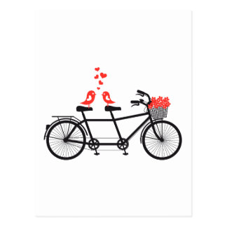 Cartão Postal bicicleta em tandem com os pássaros bonitos do