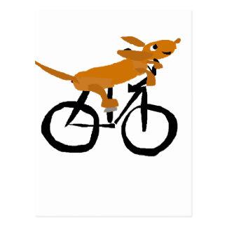 Cartão Postal Bicicleta engraçada da equitação do Dachshund