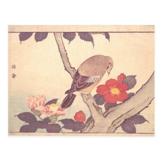 Cartão Postal Bird with Camellias