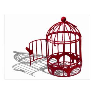 Cartão Postal BirdHouse092110