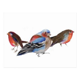 Cartão Postal Birds of a Feather 2011