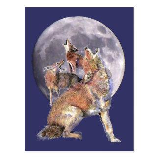 Cartão Postal Bloco do chacal que urra na lua