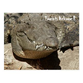 Cartão Postal Boa vinda dos turistas!! - Crocodilo -