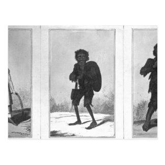 Cartão Postal Bob bonito, Bob pobre, Bob arqueado, 1819