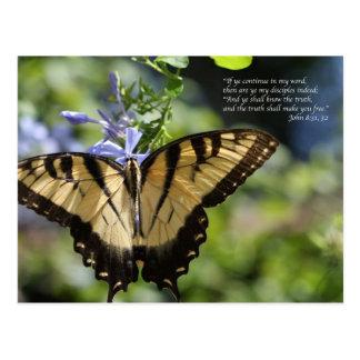 Cartão Postal Borboleta amarela de John 8 Swallowtail