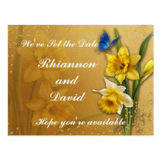Cartão Postal Borboleta azul em economias do Daffodil a data