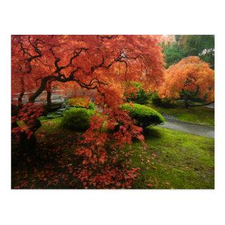 Cartão Postal Bordos japoneses em um jardim japonês no outono