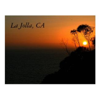 Cartão Postal Bosque do eucalipto de La Jolla