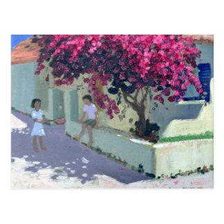 Cartão Postal Bouganvillaea Zante 1999
