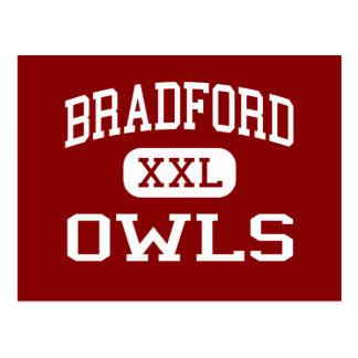 Cartão Postal Bradford - corujas - área - Bradford Pensilvânia