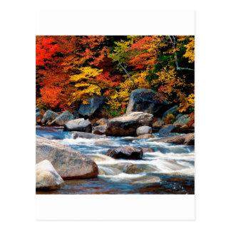 Cartão Postal Branco New Hampshire do rio
