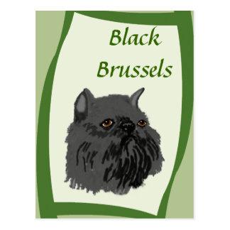 Cartão Postal Bruxelas preto Griffon
