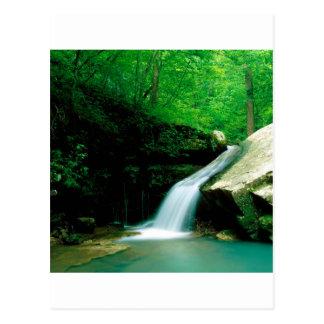 Cartão Postal Búfalo indiano Arkansas da cachoeira