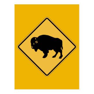 Cartão Postal Búfalos que vagueiam, sinal de aviso do tráfego,
