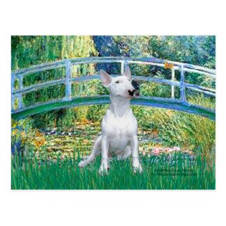 Cartão Postal Bull terrier 1 - Ponte