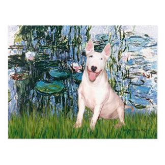 Cartão Postal Bull terrier 4 - Lírios 1