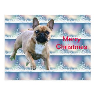 Cartão Postal Bulldogs franceses postais de natal