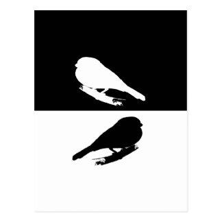 Cartão Postal Bullfinch